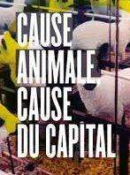 Cause animale … de quoi qu'on cause ?